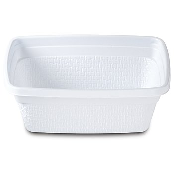 Disposable Dishware