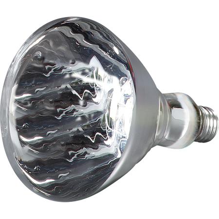 HLRP602 - 250 Watt White/Clear Infrared Bulb - White
